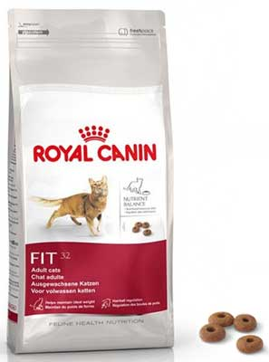 Royal Canin Fit 32 Review