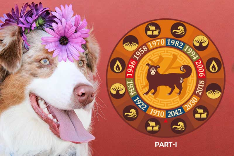 Your Zodiac Says…This Dog Part II