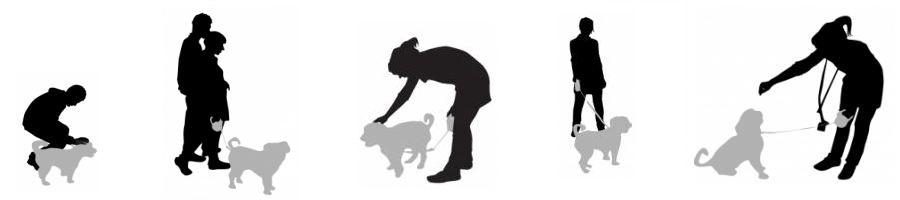 Dog Training : From Kujo To Lassie