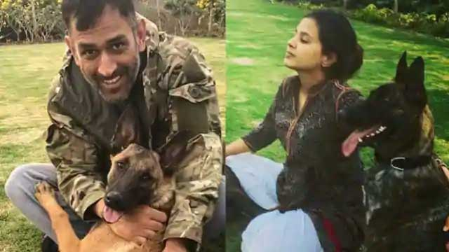 10 Indian Celebrities & Their Pets - Captain Cool MS Dhoni