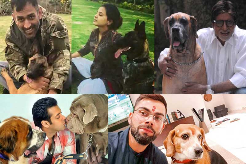 10 Indian Celebrities & Their Pets