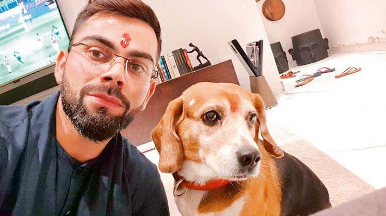 10 Indian Celebrities & Their Pets - Virat Kohli