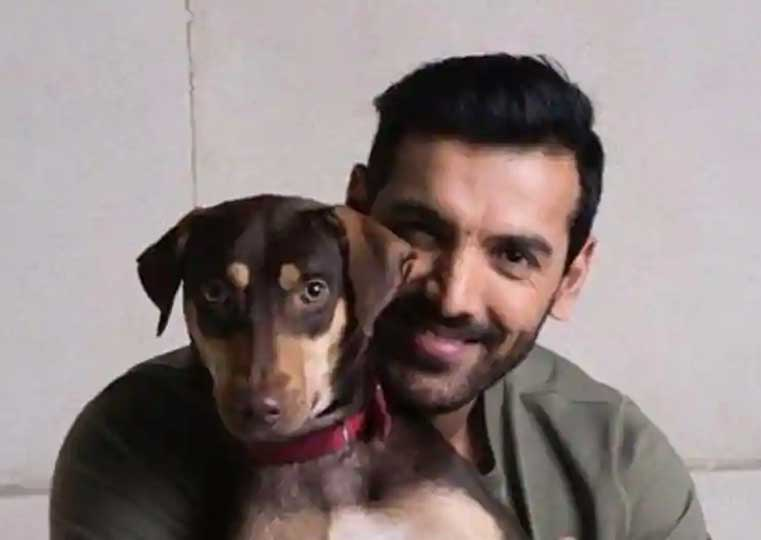 10 Indian Celebrities & Their Pets - John Abraham