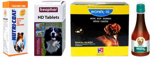 Pet Owner Must And Should Have Products - Health Supplements