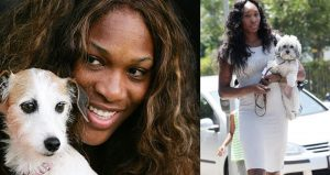 Williams Sisters - Olympians And Their Exotic Pals