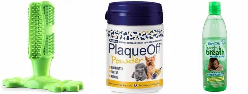 Pet Owner Must And Should Have Products - Dental Care