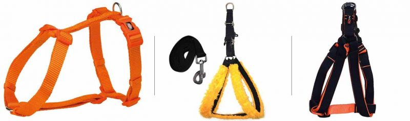 Pet Owner Must And Should Have Products - Harness and Collars