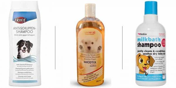 Pet Owner Must And Should Have Products - Dog Shampoos And Soaps