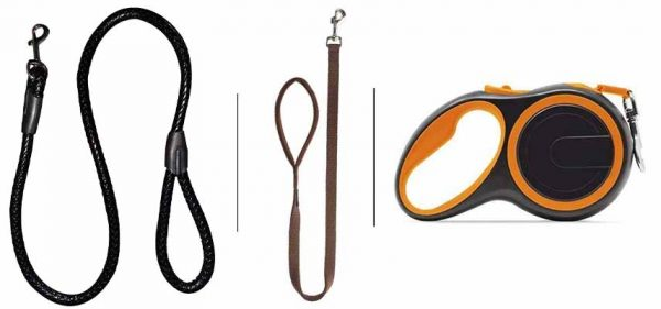 Leash Train Your Dog This Way - Rope And Leash