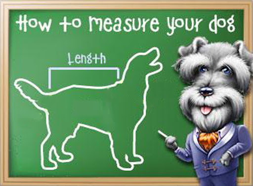 Dog Clothing – How To Measure Up Your Dog For A New Coat & Other Clothing