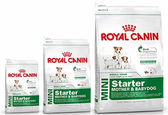 Royal Canin Mini Starter