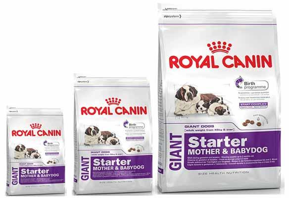 Royal Canin Giant Starter
