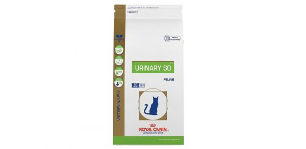 Royal Canin Adult cat food