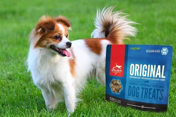 Orijen Free-Run Duck Dog Treat