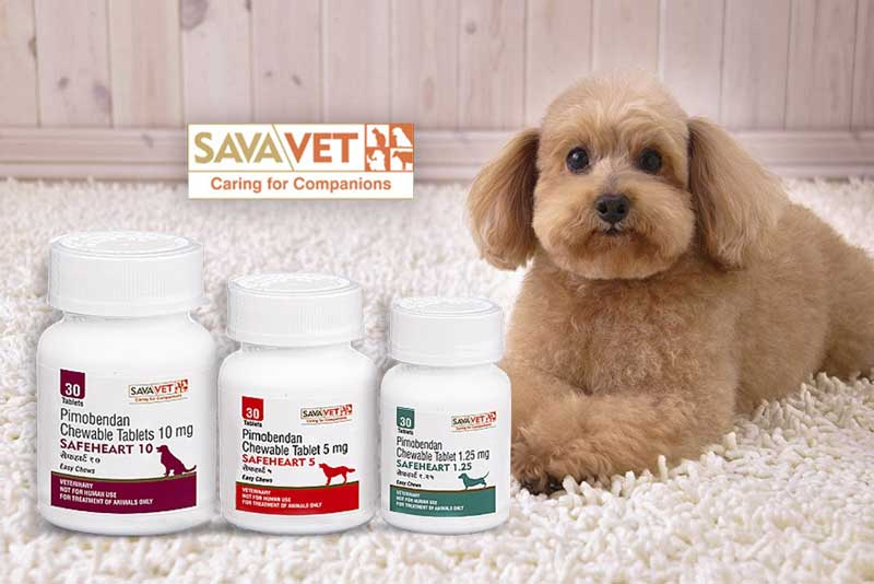 How is Safeheart medicine used for dogs?