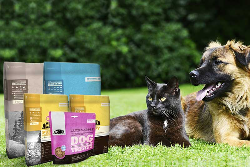 What makes Acana pet food premium?