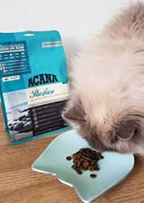 Acana Pacifica Cat food - Review