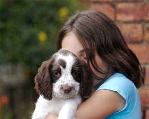 5 Things Your Dog Hates - Hugs From Strangers