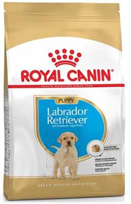 Royal Canin Labrador Retriever Junior Review