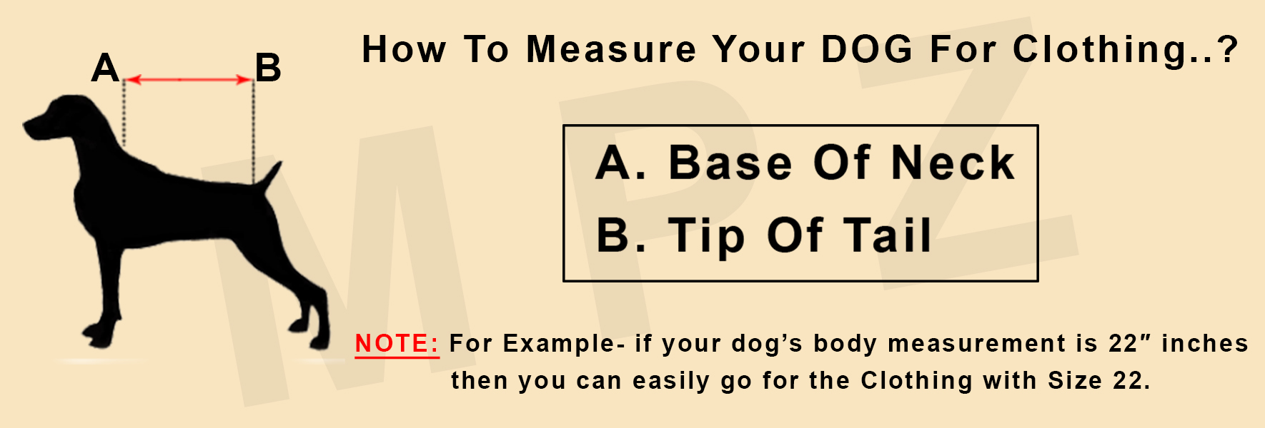 How to measure your dog for clothing?