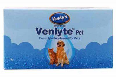 How to prevent your dog from heatstroke - Venkys Venlyte pet