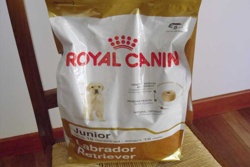Royal Canin Labrador Retriever Junior Review